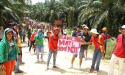 Tanah HGU Dan HGB Telantar Bisa Redistribusi