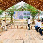 Presiden Jokowi Tinjau Lokasi Pengembangan Lumbung Pangan Nasional di Kapuas