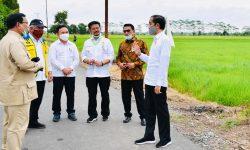 Presiden Jokowi Tinjau Jaringan Reklamasi Rawa di Pulang Pisau