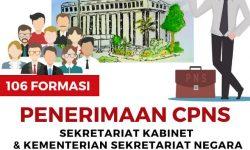 SKB CPNS 2019 Segera Dilaksanakan, 6 Hal Penting Harus Diperhatikan Semua Instansi