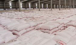 Pupuk Subsidi Disalurkan Melalui 1.226 Distributor dan 33.804 Kios