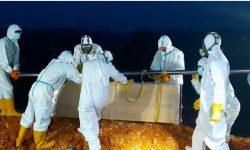 Angka Kematian Corona Tinggi, Samarinda Seharusnya Terapkan PPKM