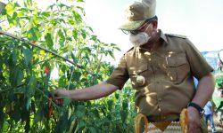 Gubernur Kaltara: KUB Bisa Meningkatkan Kesejahteraan Rakyat