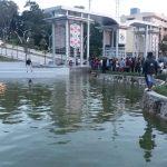 Nekat Berenang, Anak Meninggal di Kolam Dekat Gerbang Unmul
