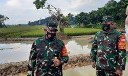 Kodam VI/Mlw Tegaskan Kaltim Ikut Dukung Program Ketahanan Pangan Nasional