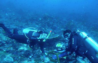 Pengembangan Pembangkit Listrik Tenaga Arus Laut, ESDM Lirik Selat Pantar NTT