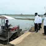Pengembangan Food Estate di Kalteng, Presiden:Gunakan Teknologi Modern