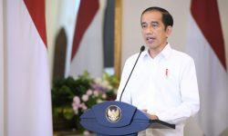 Presiden Minta Peta Jalan Optimalisasi Pemanfaatan Batu Bara Dipercepat