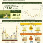 Produksi Beras Kaltara 2020 Diperkirakan 23.720 Ton