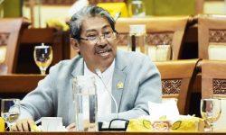 Mulyanto: Proyek Pembangkit Listrik Tenaga Sampah Jangan Dipaksakan