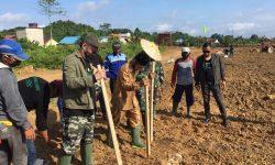 PT BHP Mulai Tanam Komoditi Pangan di Desa Tanjung Batu