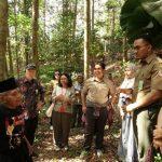 Menengok Hutan 5.000 Hektare di Tuana Tuha yang Masuk Program Kampung Iklim