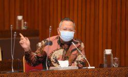 Pemerintah Naikkan HET Pupuk Subsidi Tanpa Konsultasi DPR