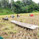 Johan Rosihan : Jangan Ada Lagi Pemotongan Anggaran Sektor Pertanian Secara Sepihak