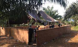 Malaysia Amankan 17 WNI Penjudi Sabung Ayam Dalam Kebun Sawit