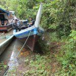 KLHK Tangkap 3 Pemburu Satwa di Hutan Taman Nasional, Satu Orang Lagi Kabur