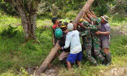 Sinergi Apik, Satgas Pamtas RI-PNG Yonif 611/Awang Long Bersama Warga Terangi Jalan
