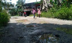 Sudah 5 Tahun Diusulkan DPRD Nunukan, Jalan Borneo Tak Kanjung Diperbaiki