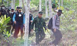 BNN RI Musnahkan 9 Hektare Ladang Ganja di Aceh Utara