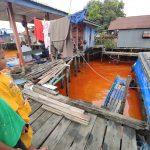 120 Ton CPO Cemari Sungai Mahakam, Diduga dari Kapal Mulia Mandiri yang Tenggelam