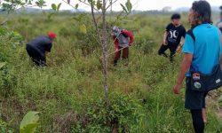 Penting, Media dan Jurnalis Lebih Aktif Suarakan Isu Lingkungan Hidup