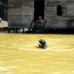 Ratusan Rumah di Berau Terendam Banjir Diduga Imbas Jebolnya Tanggul Tambang