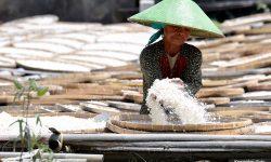Rakoor TPIP dan TPID, Presiden : Bantu Tingkatkan Produktifitas Petani dan Perkuat UMKM