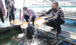 KJA di Bontang jadi Bio Indikator Perairan & Kelangsungan Hidup Ikan