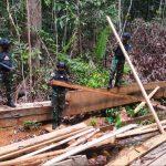 Satgas Pamtas Yonarhanud 16/SBC Amankan Kayu Hasil Aktivitas Ilegal