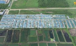 Pemerintah Salurkan 1.367 Unit Bantuan PSU di Kalimantan Barat