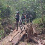 Satgas Yonif 611/Awl Bereskan Patroli Patok Batas RI-PNG, Tidak Ada yang Bergeser