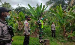 TNI Polri Solid dalam Patroli di Kampung Perbatasan RI-PNG