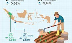 Juli 2021, Nilai Tukar Petani Nasional Turun 0,11 Persen
