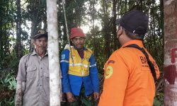 Buka Lahan, Dua Warga Tarakan Diduga Tersesat di Hutan Ditemukan Selamat