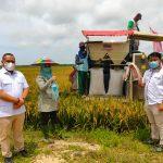 Petani Desa Semangkok Panen Padi Unggul 93 Ton