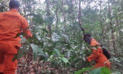 Dicari Sepekan, Hilangnya Amiruddin di Hutan Anggana Masih Misteri