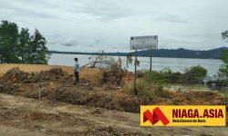 LSM Panjiku Minta Pemerintah Nunukan Tindak Pengrusak Mangrove