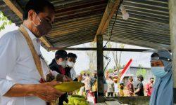 Saat Presiden Jokowi Mampir Beli Jagung di Penjual Pinggir Jalan