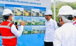 Presiden Cek Aktivitas Bongkar Muatan di Terminal Multipurpose Wae Kelambu di NTT