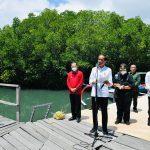 Presiden Ingin Model Rehabilitasi Mangrove di Bali Direplikasi di Provinsi Lain